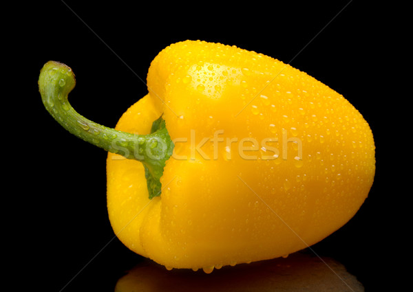 Studio shot of yellow bell pepper isolated on black with water d Stock photo © dla4