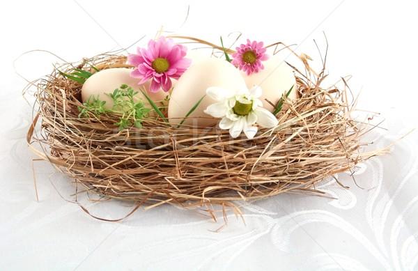 Пасху белый яйца гнезда розовый белые цветы Сток-фото © dla4