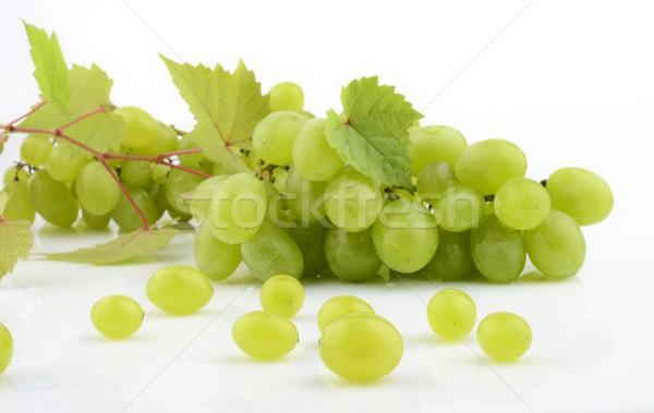 Bos witte druiven wijnstok bladeren tak Stockfoto © dla4