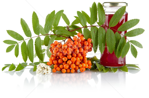 Orange rowanberry with jar of juice isolated on white background Stock photo © dla4