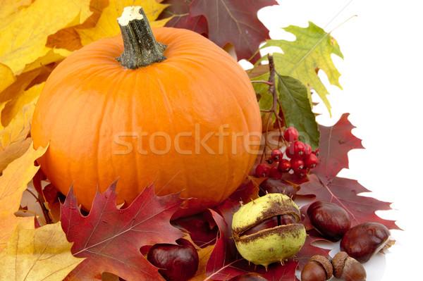 Foto stock: Lado · tiro · calabaza · hojas · de · otoño · acción · de · gracias · día