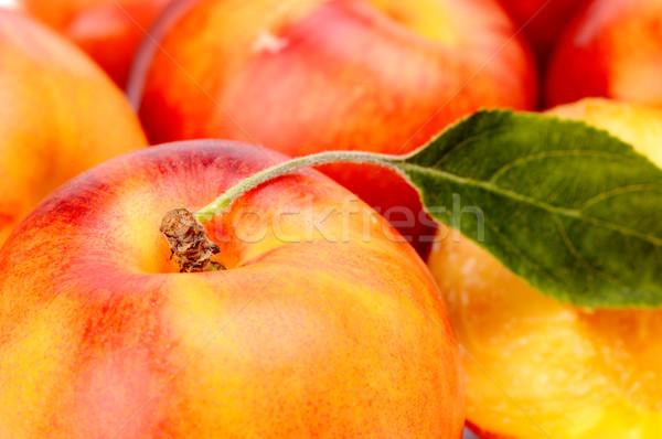 Sok levél narancs piros színes űr Stock fotó © dla4