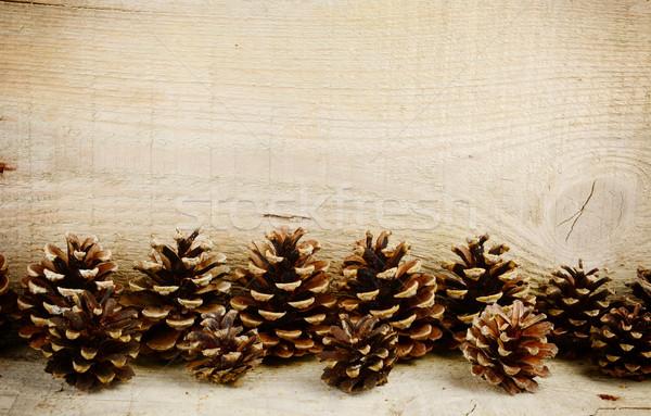 Fondo línea horizontal pino Navidad Foto stock © dla4