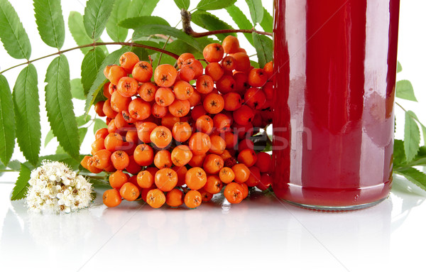 Cropped orange rowanberry with jar of juice on white Stock photo © dla4