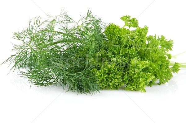Perejil hojas aislado blanco vegetales frescos Foto stock © dla4