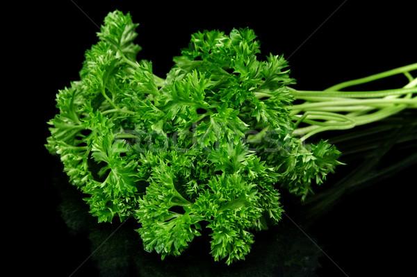 Perejil hojas aislado negro alimentos hoja Foto stock © dla4