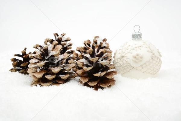 Weiß Weihnachten Spielerei Kiefer Schnee isoliert Stock foto © dla4