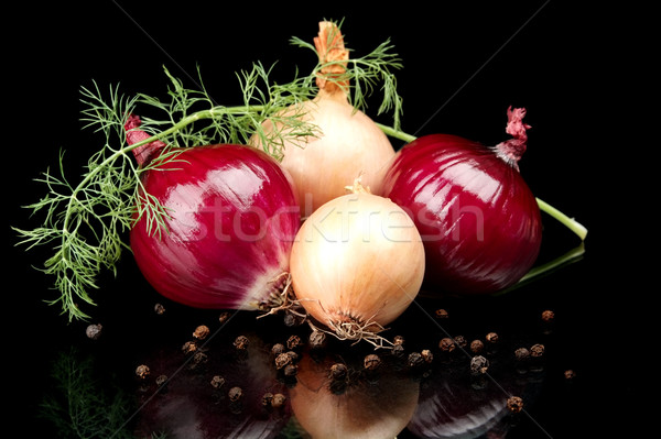 Onions,red onions,dill,pepper and allspice isolated on black Stock photo © dla4