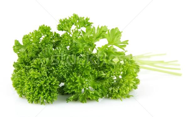 Salsa folhas isolado branco vegetal fresco Foto stock © dla4