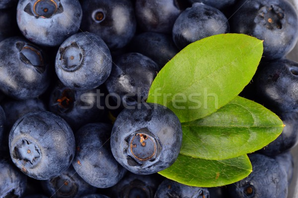 Macro view group fresh blueberries with leaf background  Stock photo © dla4