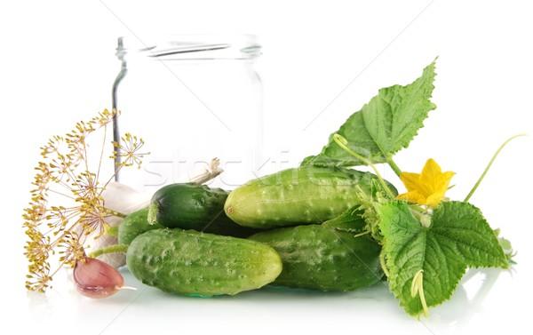 Many fresh raw cucumbers with jar isolated on white Stock photo © dla4