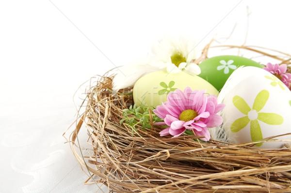 Shot Easter Eggs gniazdo kwiaty odizolowany cięcia Zdjęcia stock © dla4
