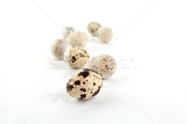 Scattered easter quail eggs on white tablecloth  Stock photo © dla4