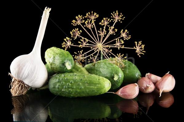 Noir isolé feuille espace vert laisse Photo stock © dla4