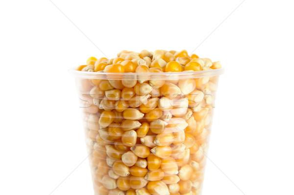 Plástico taza completo maíz semillas blanco Foto stock © dla4
