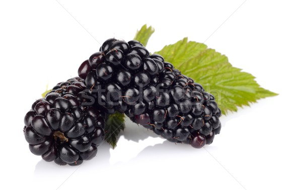 Studio shot of two fresh blackberries with leaves isolated white Stock photo © dla4