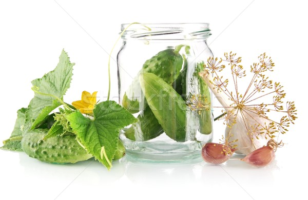 Ingredients for pickled or preserved cucumbers on white Stock photo © dla4