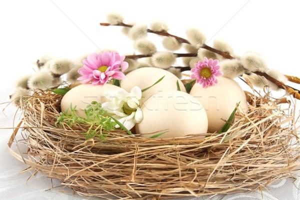 Páscoa branco ovos ninho rosa flores brancas Foto stock © dla4