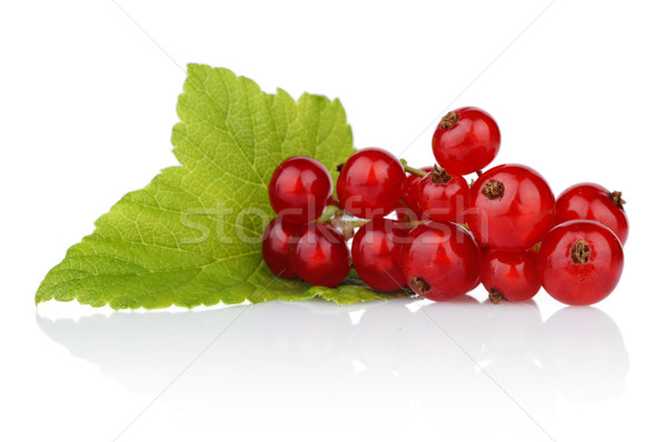 Photo of redcurrant with leaf isolated on white Stock photo © dla4