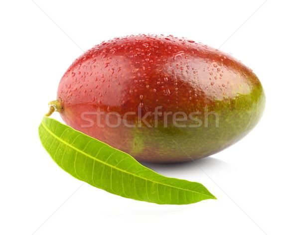 Studio shot of one whole mango with leaf isolated Stock photo © dla4