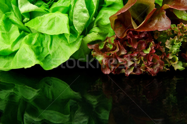 Many varieties of lettuce on black on top Stock photo © dla4