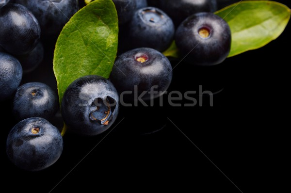 Parecchi tutto mirtilli foglie isolato nero Foto d'archivio © dla4