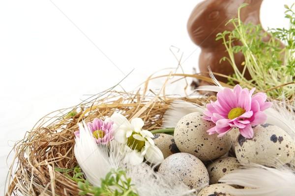 Пасху яйца гнезда цветы белый пастельный Сток-фото © dla4