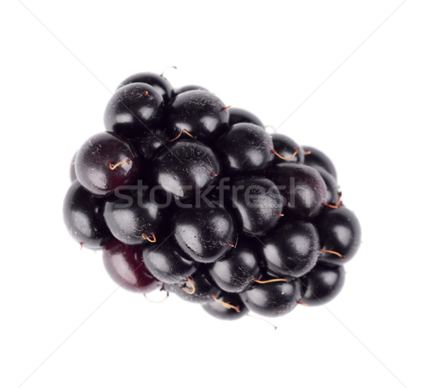 Studio shot one fresh blackberries isolated white  Stock photo © dla4