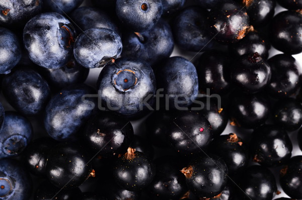 Macro closeup view group fresh blueberries and blackcurrants background  Stock photo © dla4