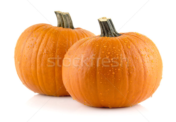 Closeup shot of beaded pumpkins isolated on white Stock photo © dla4