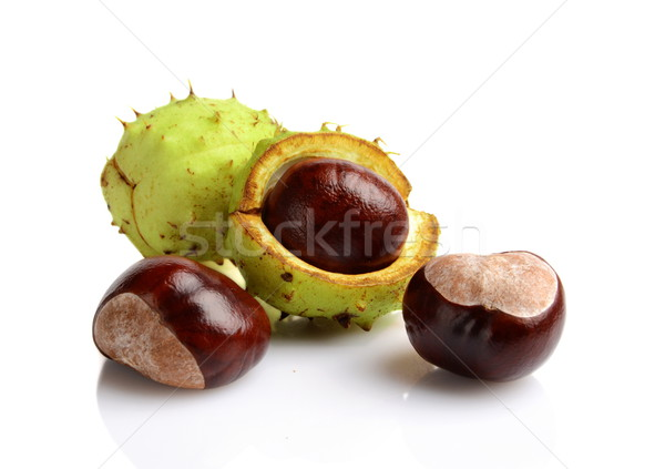 Closeup shot few chestnuts isolated on white background Stock photo © dla4