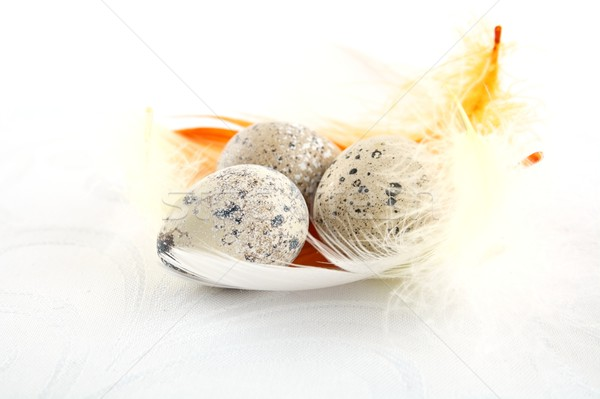 Group easter quail eggs on white tablecloth with feathers  Stock photo © dla4