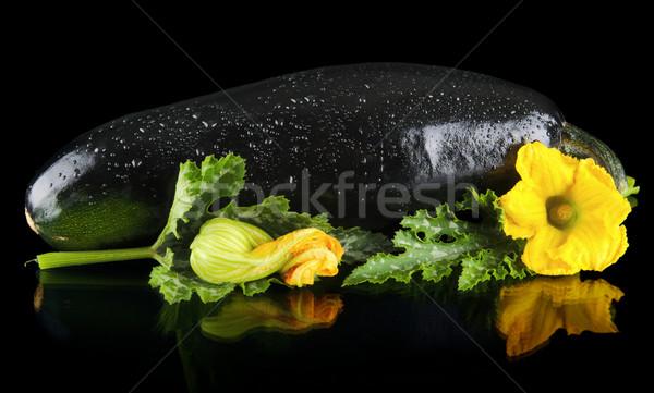 Closeup wet zucchini with flower on black background Stock photo © dla4