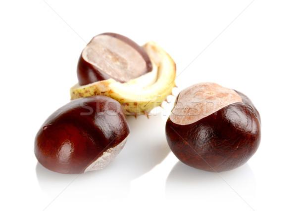 Closeup shot few chestnuts isolated on white background Stock photo © dla4