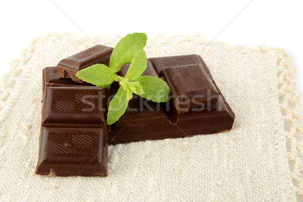 Group of blocks of chocolate with sage on white material Stock photo © dla4