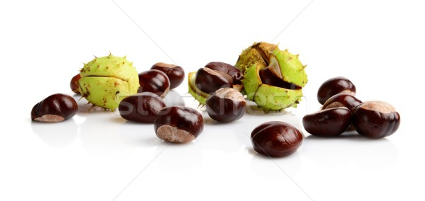 Horizontally many chestnuts isolated on white background Stock photo © dla4