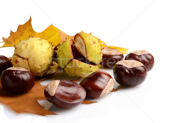 Group of many chestnuts in the corner with autumn leaves Stock photo © dla4