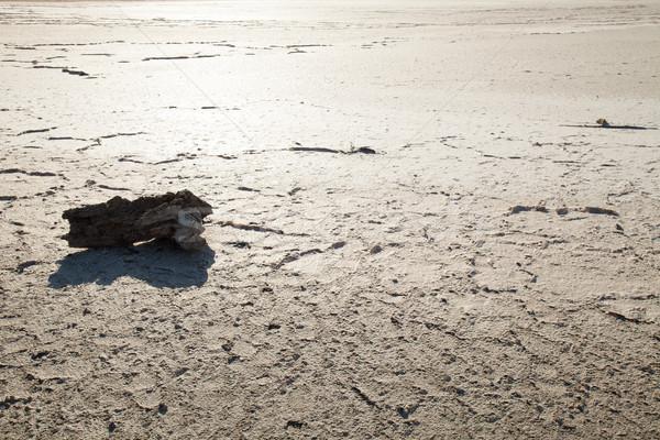 çöl kuraklık toprak su arka plan yaz Stok fotoğraf © dmitriisimakov