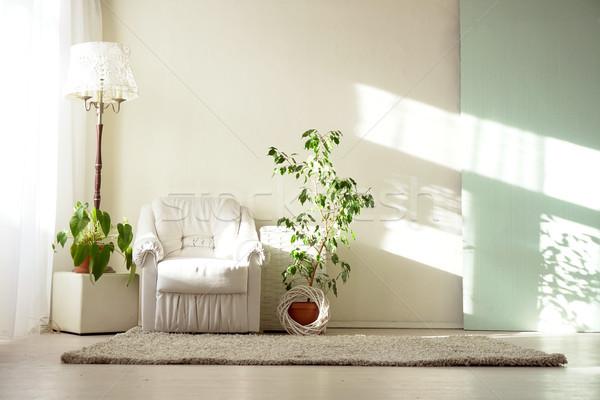 明るい ルーム 白 アームチェア ホーム 植物 ストックフォト © dmitriisimakov