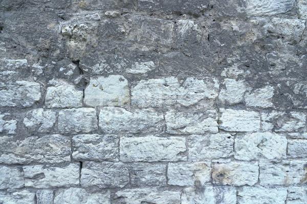 Velho stonewall textura cinza cor projeto Foto stock © dmitriisimakov