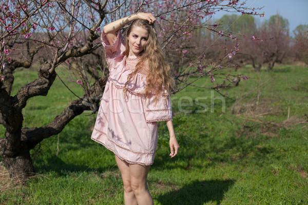 ピンク ドレス 庭園 花 ブロンド ストックフォト © dmitriisimakov