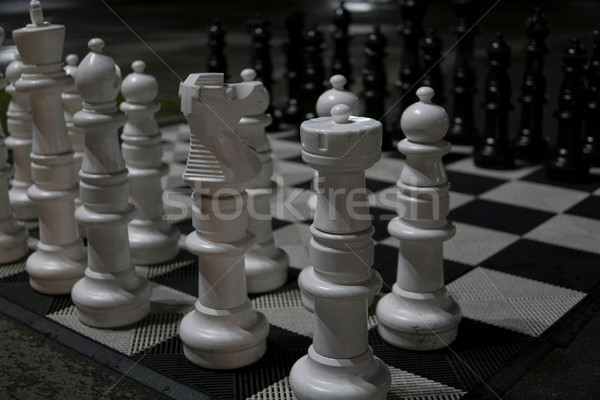 large white and black chess pieces z Stock photo © dmitriisimakov
