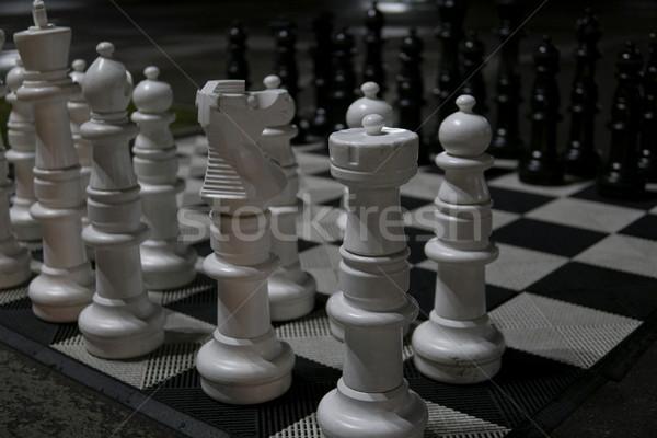 Nagy fehér fekete sakkfigurák fű ló Stock fotó © dmitriisimakov