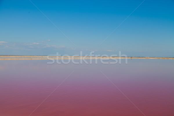 Rosa lago cielo azul paisaje agua mar Foto stock © dmitriisimakov