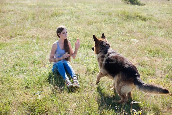 Kadın köpek çoban köpeği eğitim güzel gökyüzü Stok fotoğraf © dmitriisimakov