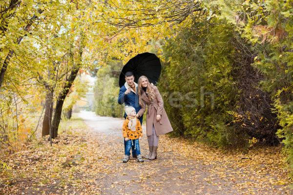 Aile yürümek sonbahar orman park yağmur Stok fotoğraf © dmitriisimakov