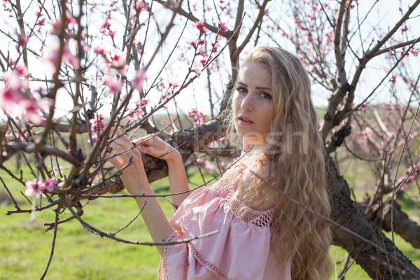 blonde girl walks the garden blossoming peach Stock photo © dmitriisimakov