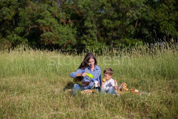Anya fiú eszik piknik mező család Stock fotó © dmitriisimakov