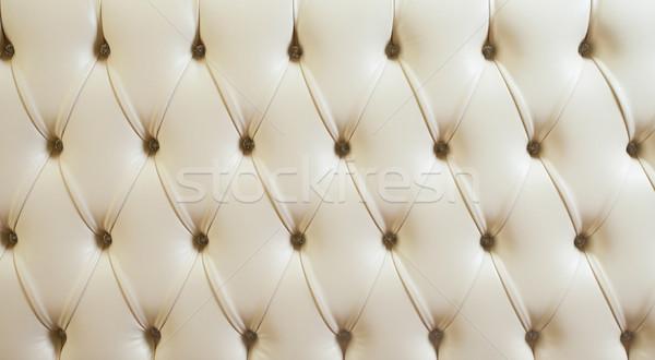 Gyémánt bőr néz tér fotó elefántcsont Stock fotó © dmitroza
