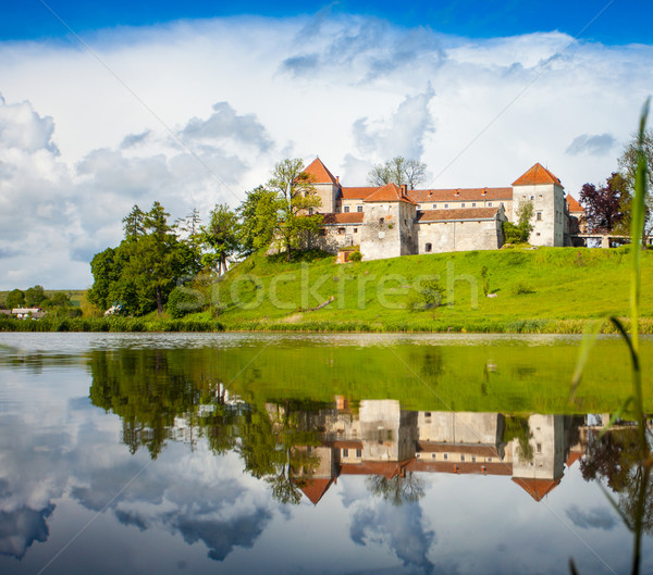 Old castle surrounded with summer nature Stock photo © dmitroza
